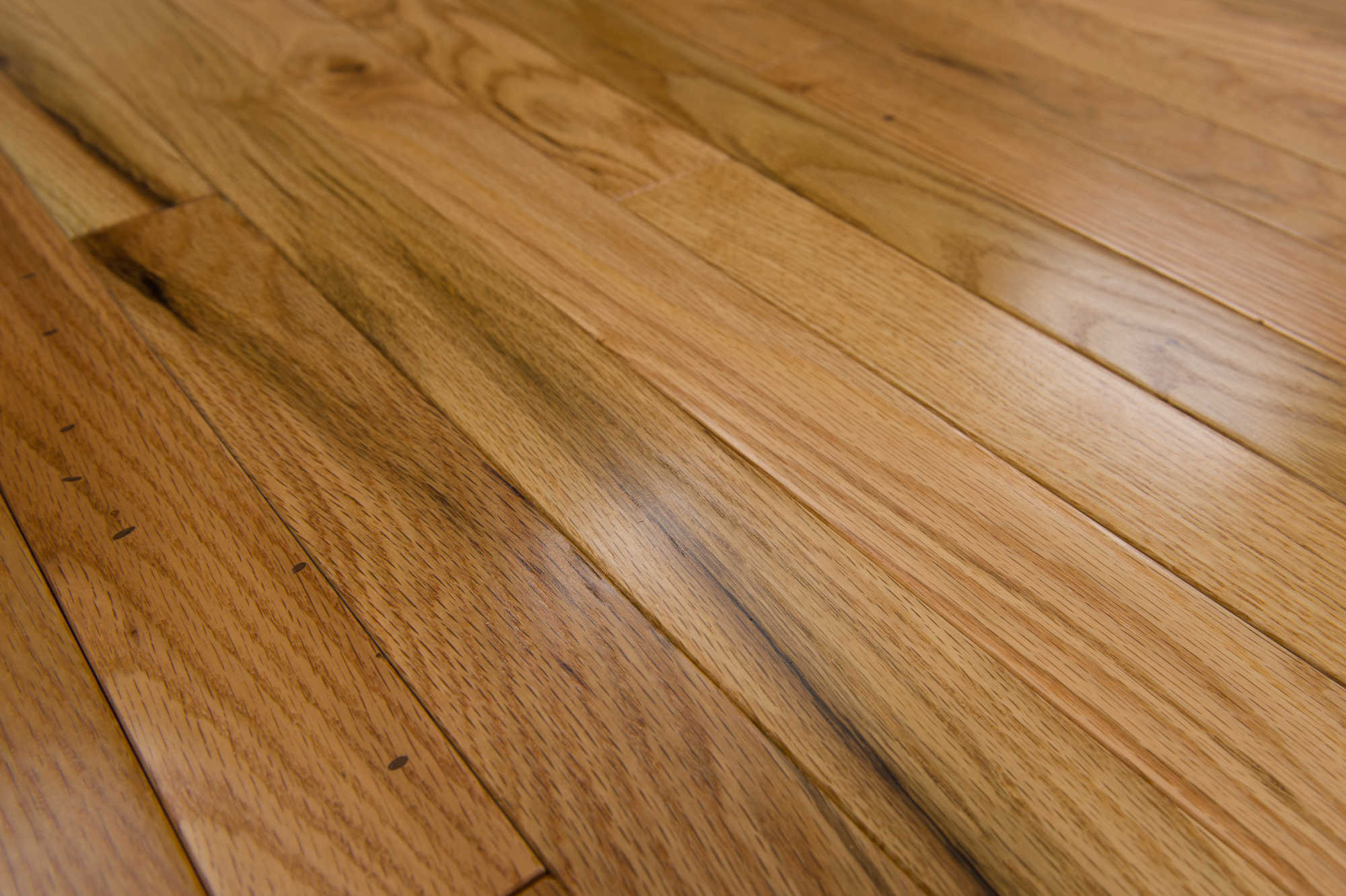 Chaplin Collection Solid Hardwood in Natural - 2-1/4' (24sqft/case)